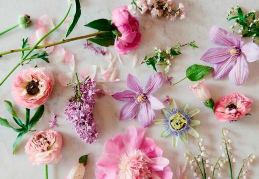 выбрать цветы
